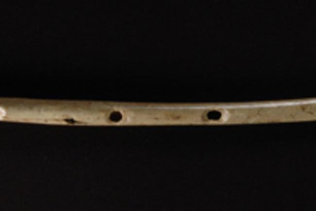 bird bone flute