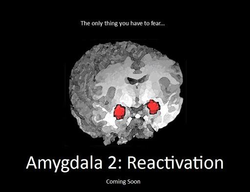 amygdala21