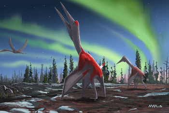 New Massive Pterosaur Named the 'Cold Dragon of the North'