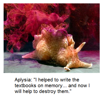 aplysia.png