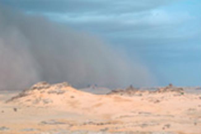 sandstorm-panel-550.jpg