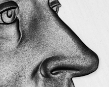 nickel-nose.png