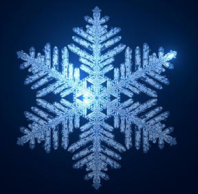 snowfake_W2.jpg