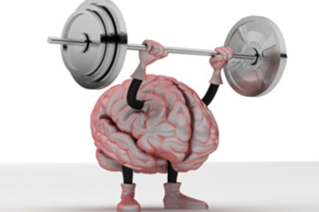 brain_shutterstock.jpg