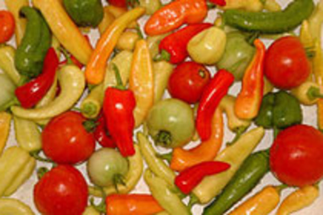peppers-tomatoes.jpg