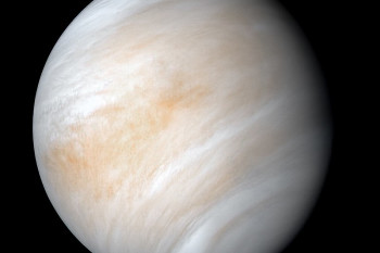 The Curious Question of Life on Venus