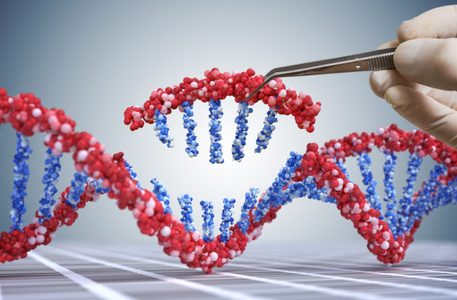 We've Sequenced the Human Genome. So Why Haven't We Cured More Diseases?   Discover Magazine