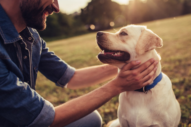 Happy man with pet dog - Shutterstock