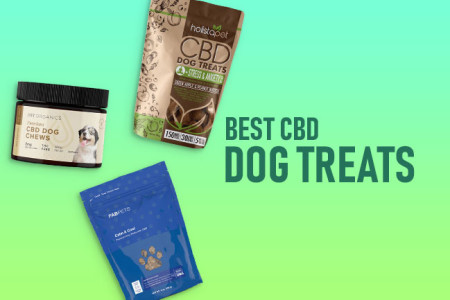 3 Best CBD Dog Treats: Organic CBD for Dogs