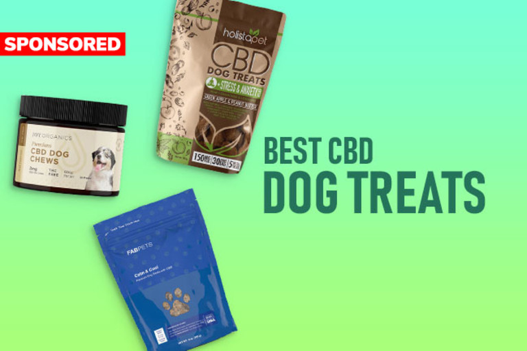 Best CBD Oil for Dogs: Top 5 Brands ...discovermagazine.com
