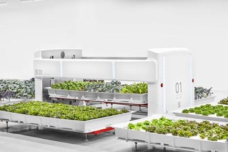 Meet Angus: A Robotic Field Hand for the Autonomous Farming Revolution