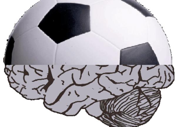 soccer_brain.png