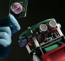 robot-and-brain.jpg