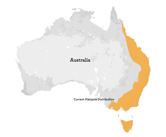 Platypus Range Map - bioGraphic