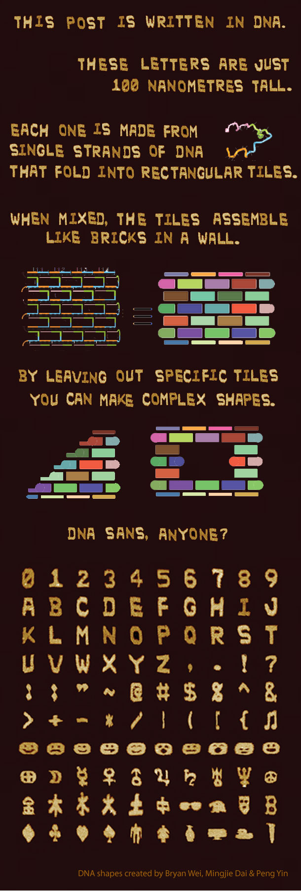 DNA-letters.jpg