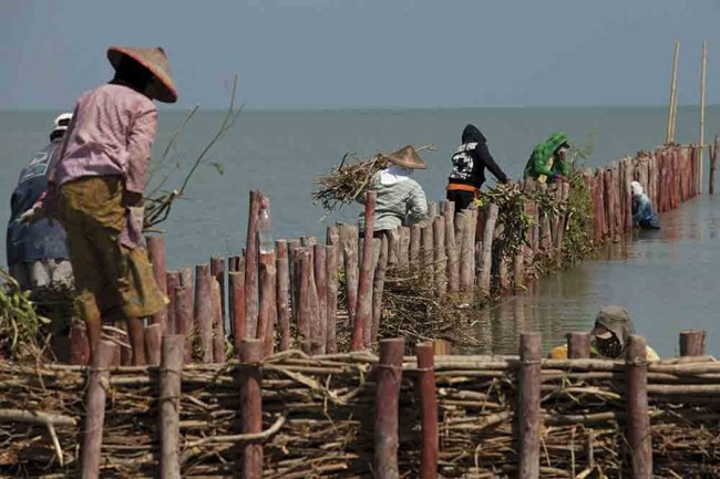Building-permeable-dams-2---Nanang-Sujana