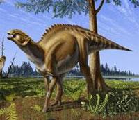 Brachylophosaurus.jpg