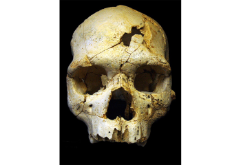 When Did Ancient Humans Begin to Understand Death?