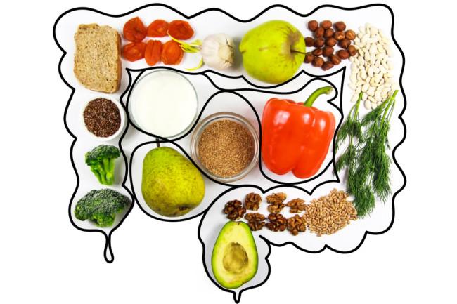 Food in the Gut - Shutterstock