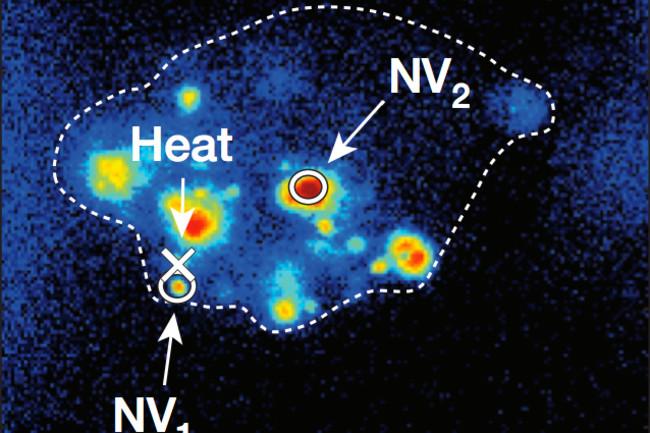 nanothermometer.jpg