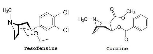 tesofensine1