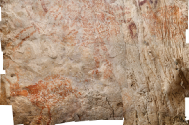 Wild Cattle Cave Art Borneo