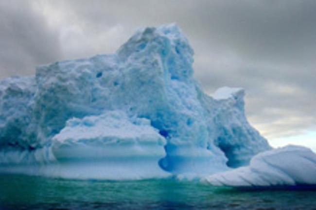antarctic220.jpg
