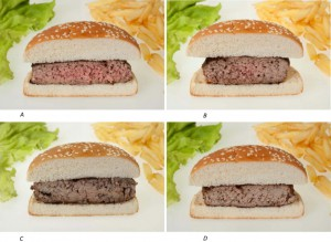 Fig 1 hamburger meat color and texture survey