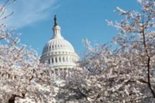 p73851-Washington-Capitol_Building.jpg