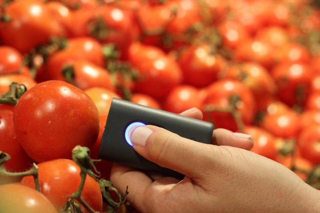tomatoes.JPG-1024x683.jpeg