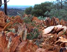 australian-rocks.jpg