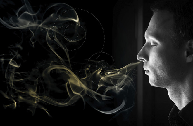 The Sense of Smell in Humans is More Powerful Than We Think   Discover  Magazine