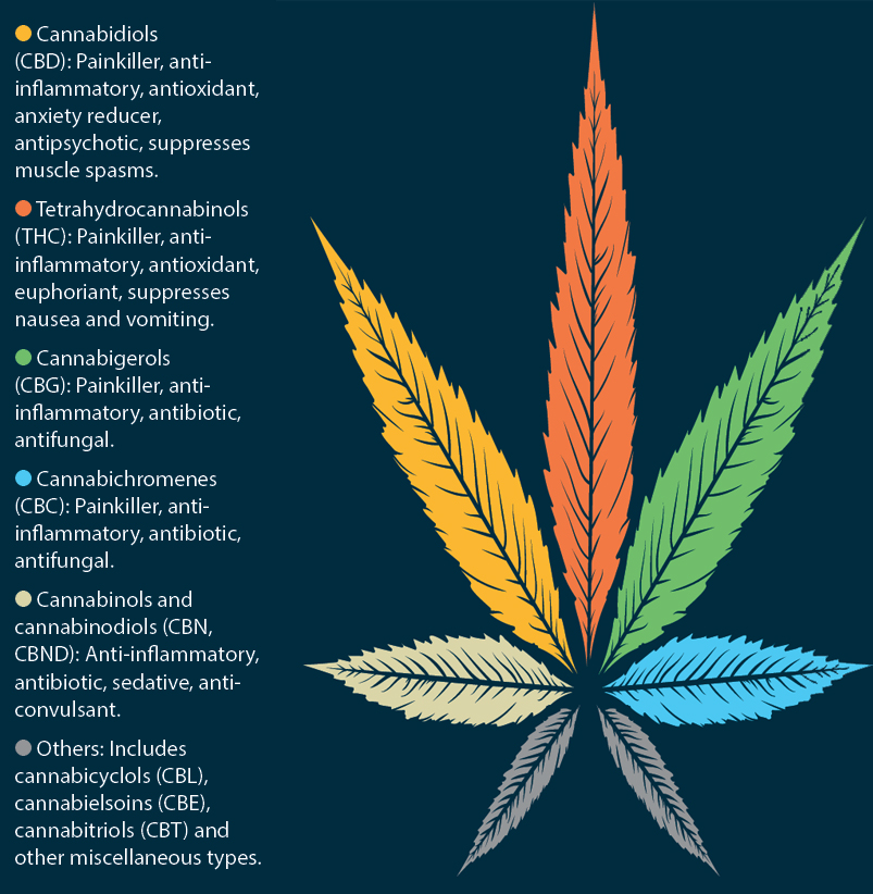 Cannabis Compounds