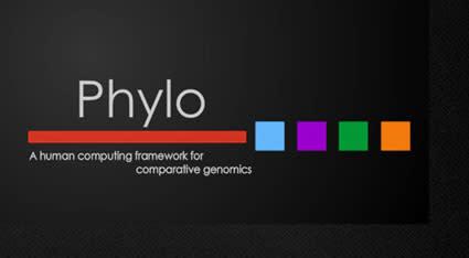 phylo.jpg
