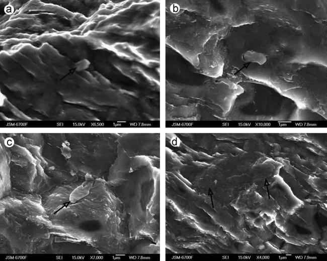 Tunguska-Mineral-Sample.jpg