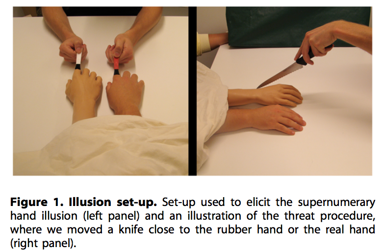 figure_illusion_hand1.png