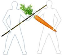 Carrot_stick.jpg