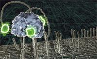 Nanorobots.jpg