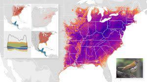 eBird North America