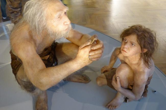 Neanderthals at Museum - Wikimedia