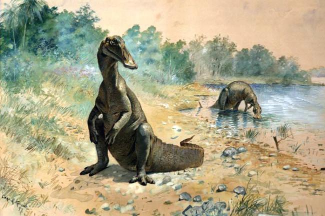 Knight_hadrosaurs.jpg