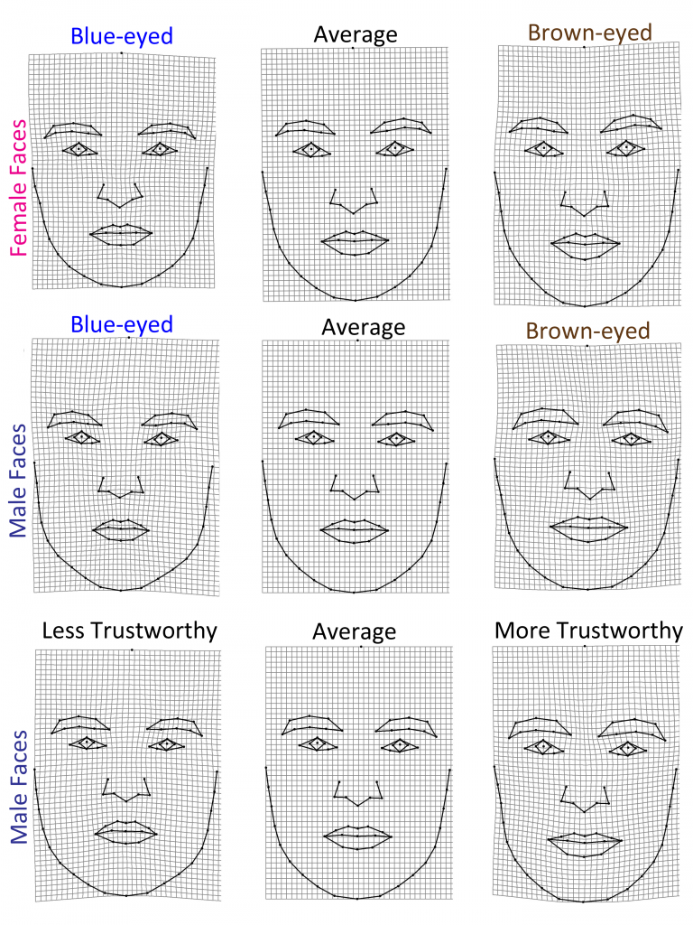 faces_shape_trustworthiness1-768x1024.png