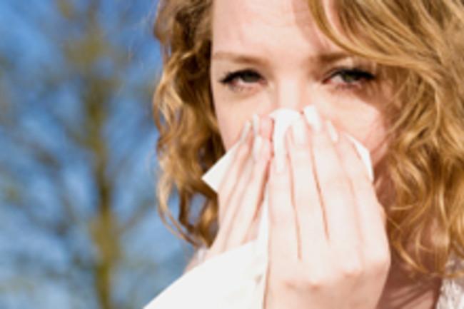 sneeze220.jpg
