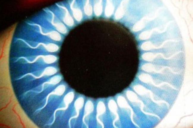 eye-300x286.jpg