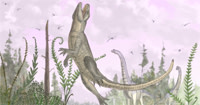 Pakasuchus.jpg