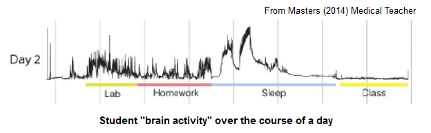 brain_lecture.png