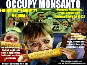 Monsanto-1-300x225.jpg