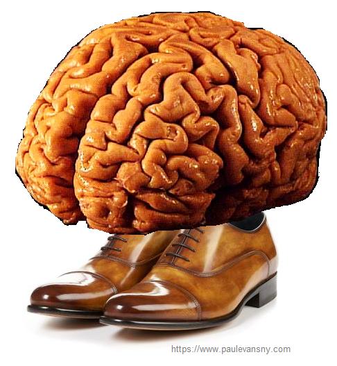 brainshoes