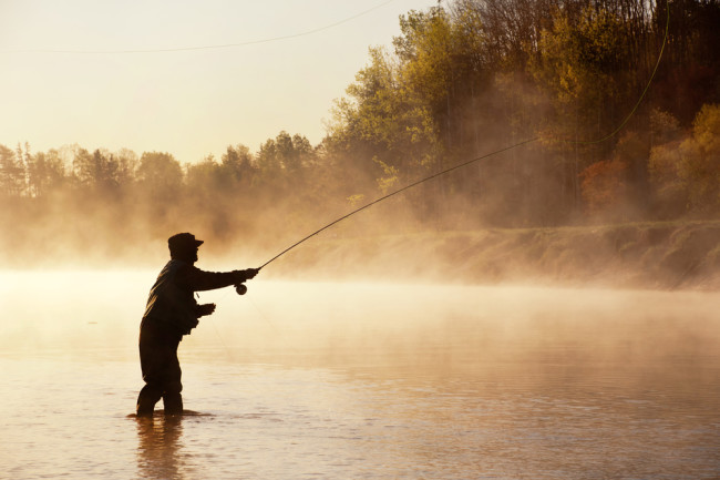 The Whip-Like Physics of Fly Fishing | Discover Magazine