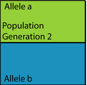 population1gen1genb.jpg